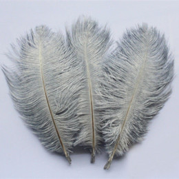Wholesale Wedding Pheasant Feathers - Wholesale 100pcs  Lot 6 -8 ''15 -20cm High Quality Grey Ostrich Feathers Wedding Decoration Pheasant Tail Feather