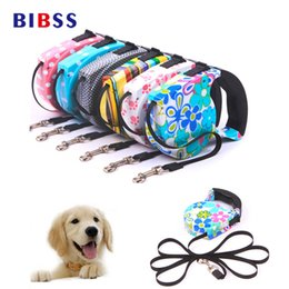 Wholesale Rope Slip Leash - Outdoor Running Retractable Dog Leashes Fashion Slip Metail Chain Pet Leash for Cat Yorkies Teddy Nylon Training Dog Rope Belt
