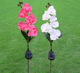 IP44 водонепроницаемый светодиодный солнечный путь свет растения Открытый сад газон лампа LED солнечный свет роза / лилия / тюльпан / бабочка орхидея от Поставщики садовые растения бабочки