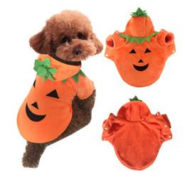 Abiti usati online-Vendita calda Pet vestiti Halloween Cane zucca Devil Demo Suit Teddy Autunno Inverno Dress Facile da usare 27 db dd