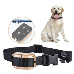 Wholesale New Usb Products - New Pet supply Dog anti bark collar Electric Dog Training Collars USB Rechargeable Waterproof Adjustable Dog shock collar 774E167