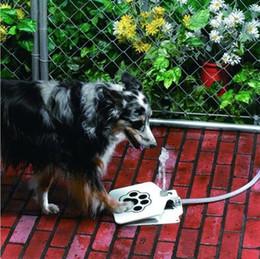 fontane per bere cane Sconti VENDITA CALDA Pet Dog Water Upgraded Outdoor Step-On Doggie Fountain Fornisce Endless Fornitura istantanea di strumenti freschi e freddi