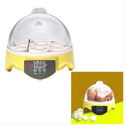 spine uniche Sconti Commerci all'ingrosso Spedizione gratuita Unico automatico 7 uova Incubatore di pollo Hatcher Controllo della temperatura Spina di UE