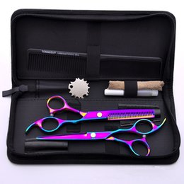 1 Set Forbici dentali per animali domestici con forbici per forbici piatte da confezioni per animali domestici fornitori