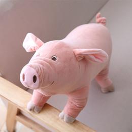 Suini rosa peluche online-25 cm Kawaii Cartoon Pig Peluche Peluche Peluche Rosa Maiale Cuscino Casa Divano Decorazione LA060