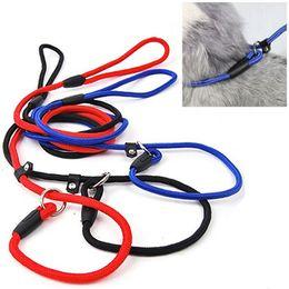 Wholesale Rope Slip Leash - 2015 New Pet Dog Nylon Rope Training Leash Slip Lead Strap Adjustable Traction Collar 51AM