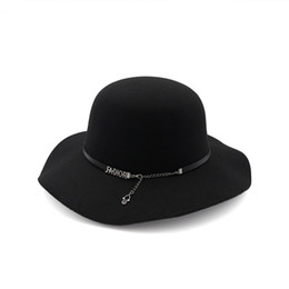 Wholesale Animal Roll - Big brim hat spring and autumn and winter new wild hat wide eaves dome hat jazz winter roll up