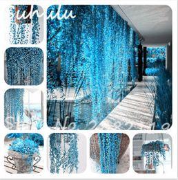 2019 semillas frescas de arbol Rare Blue Pearl Chlorophytum Seed 100 unids exóticas Semillas Suculentas Anti Radiación Escritorio de escritorio flor de jardín decoración