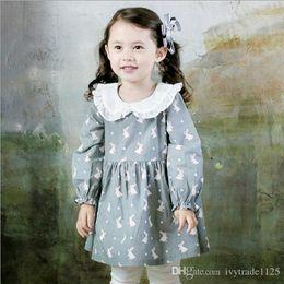 Wholesale Girls Simple Cotton Dresses - 2017 NEW Ins Euro Fashion Girl Lolita Dress white pet pan collar long sleeve rabbit dress Autumn 100% cotton girl dress elegant simple style