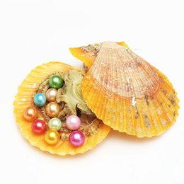 Wholesale White Shell Flower Necklace - 2018 Natural Akoya 6-7mm Mix Colors Seawater Rainbow shells Round Pearl Oyster For DIY Making Necklace Bracele Earrings Ring Jewelry Gift