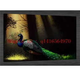 Wholesale Peacock Oil Painting Framed - Animal Forest Peacock,Canvas Prints Wall Art Oil Painting Home Decor 24x36 20x30 16x24 12x18 (Unframed Framed)