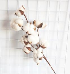 Algodão deco on-line-Bolas de Algodão Rústico Stem Country Farmhouse Estilo Rústico Floral para Decoração de Casa de Casamento 10 cabeças de Ramo De Algodão Spray Stalk Casamento Hotel Deco
