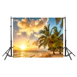Wholesale sunset canvas paintings - Summer Seascape Beach 5x3ft Sunset Photography Backdrops Blue Sky White Cloud Backgrounds for Phootgraphy Plam Tree Beach Bakdrop Photo