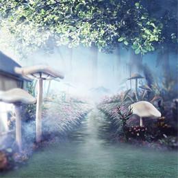 Fotografia di funghi online-Il contesto della foto di nozze del paese delle meraviglie di fantasia ha stampato i funghi Mysterious Forest Fairy Tale Children Children Photography Background