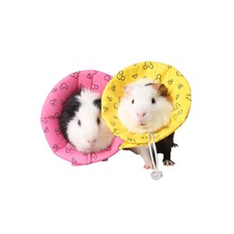 Wholesale Pig Large - small pet accessories Guinea pig Hedgehog Hamster Dutch rats rabbit collar edical products