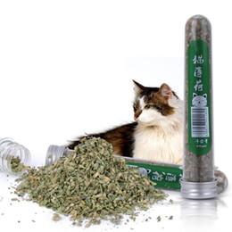 petite toilette en plastique Promotion 1 bouteille 40 ml de chat naturel pour animaux de compagnie, chat, menthe pour que votre chat ait la bonne humeur