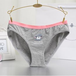 85bab9d5a44 Charming Women Lace Briefs Lady Love Sexy Pink Heart Panties Women s Low  Waist Intimates Cotton Underwear Free Shiping