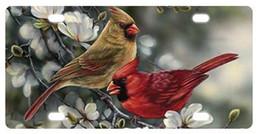"""Canada Plaque d'immatriculation nouveauté Cardinal Winter Plaque avant décorative 6 """"X 12"""" Offre"""