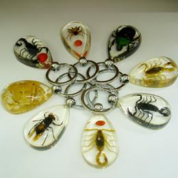 anéis de moda âmbar Desconto Presente de casamento Bonito Nova chave Anel Bonito Das Mulheres Inseto Âmbar e Transparente chave Anel de Moda das Mulheres Anel Chave de Metal