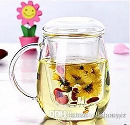 vasetti di fiori di vetro all'ingrosso Sconti All'ingrosso resistente al calore vetro teiera fiore Puer teiera Coffee Pot Teaset ufficio conveniente