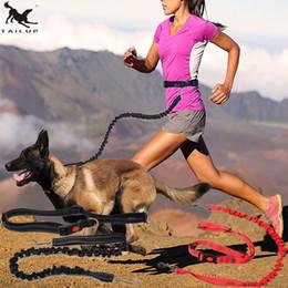 Collares de nylon reflectantes para perros online-[Tailup] Pet Dog Running Leashes Hands Fantástico para caminar con una correa de perro Cuerda con collares de perro reflectantes para correr Leash