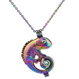 lucertola animale Sconti C240 Rainbow Color Lovely Animal Lizard Beads Cage Ciondolo olio essenziale diffusore Aromaterapia collana pendente ciondolo medaglione gabbia