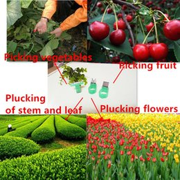 Wholesale Cheap Garden Tools - Safe and cheap hand-operated Fruit & Vegetable picking tools Good design Vegetable Fruit Picker Picking Ring   Garden Harvesting Cut Tool
