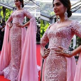 Canada Sonam Kapoor Elie Saab robes de soirée en survêtement 2019 appliques rose robes de soirée fermeture éclair dos tapis rouge robe de célébrité robes de bal cheap kapoor dress Offre
