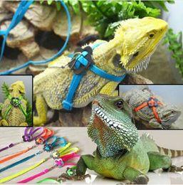 Регулируемая обучение прогулка птица попугай поводок работает кабель нейлон тяговые веревки жгут рептилия ящерица жгут поводок многоцветный игрушка любимчика от Поставщики кабельная одежда