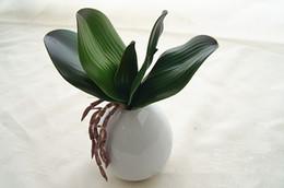 Le foglie di orchidee online-Display Fiore Tocco reale Farfalla Orchidea Foglia Artificiale Pu Pianta verde Foglie Succulente Decorazione domestica Matrimonio