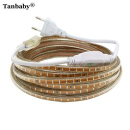 Wholesale Led Ip67 Plug - Tanbaby IP67 Waterproof SMD5050 2835 3014 220V led strip flexible light Tape 60&120 LEDs M Outdoor Garden lighting EU Plug Power