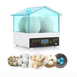 new thermostat Promo Codes - New Egg Incubator Thermostat Digital Thermostat Temperature Controller Mini Electric Tools For Chickens Ducks Gooses Birds Hatch