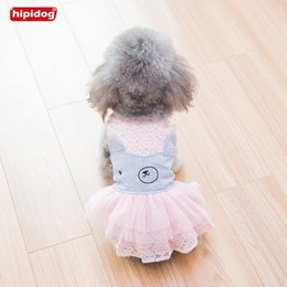 Wholesale Teddy Bears Dresses - Hipidog Spring Summer Pet Dog Lace Dress Net Yarn Bear Skirt Dog Dress Teddy Chihuahua Princess Small Dog Vest Shirt Clothes