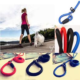 Wholesale Rope Slip Leash - Best Sale 3Colors Leash Slip Strap Adjustable Traction Collar Pet Dog Nylon Rope For Training Adjustable Traction High Quality