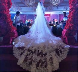 Argentina Apliques Encaje Borde Velos de novia largos Dos capas Velo de novia Accesorios nupciales Velo de novia barato con peine Suministro