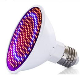 20W LED planta luz 200 cuentas E27 flor carnosa vivero hidropónico follaje rojo y azul lámpara de crecimiento de plantas desde fabricantes