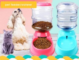 2019 automatische haustiergetränkspender Automatische Haustierzufuhr-Trinkschüssel für Hundewasser-trinkende Katze, die große Kapazitäts-Zufuhr-Haustierzufuhr und Waterer füttert günstig automatische haustiergetränkspender