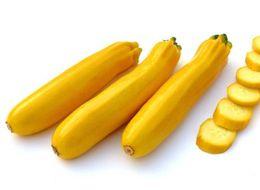 Rare Zucchini Gold Squash Sementi Vegetali Bonsai Sementi Giappone Importazione Banana Melone Cortile Impianto 10 Pz Cucurbita pepo zucca da