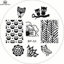 Совиное искусство ногтей онлайн-РОДИЛСЯ ДОВОЛЬНО Симпатичные Совы Nail Art Штамповка Шаблон Изображения Штамп BP54