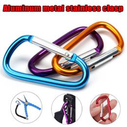 Alliage d'aluminium Randonnée Mousqueton D-Ring Clip Porte-clés Crochet Sport Boucle En Plein Air Sport Camp Keyrings ? partir de fabricateur