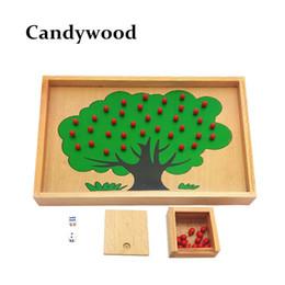 Montessori material de madera del árbol de manzana que cuenta el juego de Apple Toy Kids juguetes educativos Chidren Brain Training aprendizaje de los niños juguetes desde fabricantes