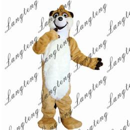 Costume de raton laveur en Ligne-2018 Nouvelle haute qualité Raccoon Mascotte costumes pour adultes cirque de noël Halloween Outfit Déguisement Costume Livraison gratuite