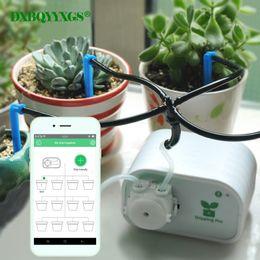 2019 irrigazione controllata Controllo del telefono cellulare Dispositivo di irrigazione automatica da giardino intelligente Pianta grassa Impianto di irrigazione a goccia irrigazione controllata economici