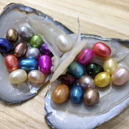 Wholesale Loose Beads For Jewelry Making - 25PCS Colorful Dyed 6-8mm Mix Colors Freshwater Rice Pearl Oyster Loose Beads For DIY Making Necklace Bracele Earrings Ring Jewelry Gift