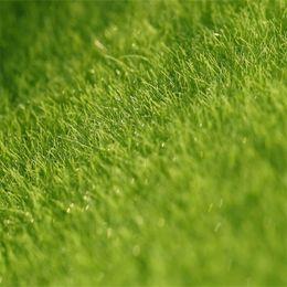 Verde in miniatura online-Micro Landscape Originalità Fairy Garden Miniature Simulazione Green Moss Lichen Ecology Artificial Lawn Bryophyte Home Decorations 1 5cj bb