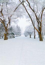 Foto szenischen hintergrund hintergrund online-Schöne Winter-Ansicht-Vinyl-Fotografie-Hintergründe druckten weißen Schnee bedeckten Baum-Straßen-Kinder-szenischen Fotoaufnahme-Hintergrund im Freien
