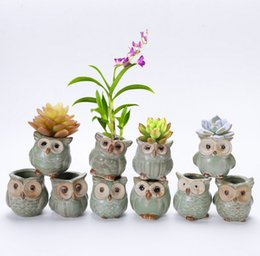 Wholesale Small Ceramic Flower Pots Wholesale - Creative mini owl shape flowerpots for Fleshy Plants Small Ceramic Pottery Vase home office Decor cute gift Craft