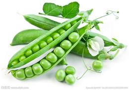 piante da giardino di erba Sconti 20 pezzi / sacchetto semi di pisello ~ Organic Super Sweet Green Freccia semi di fagiolo ~ Organicamente cresciuto. Heirloom semi di ortaggi, piante da giardino