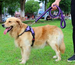 cadeia de medidores Desconto XS-XL Nylon Trelas Do Cão Leash Saddle Peito Arneses Strap + 1.2 metros Sólida trelas Pequeno Médio Grande Cães Cadeia Leva Corda Pet Suprimentos