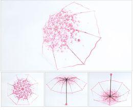 Wholesale Apollo Stainless Steel - Apollo Princess Umbrella Rain Woman 3 Fold Umbrellas For Kids Sakura Pink Umbrella Small Sunshade Transparent II-213
